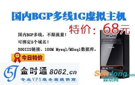 国内BGP多线1G虚拟主机