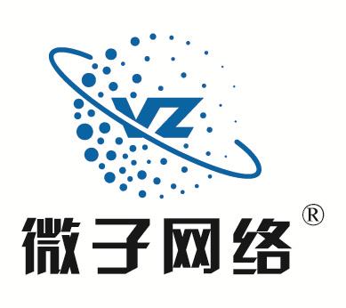 江苏微子网络科技有限公司
