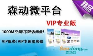南海网站建设VIP版