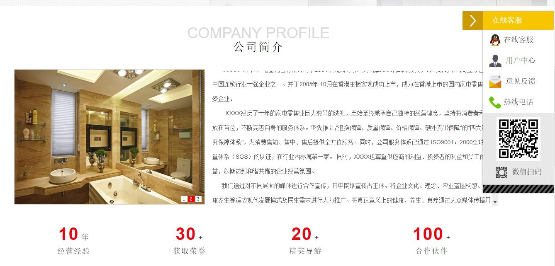 网站模板-电器销售官网展示图片4